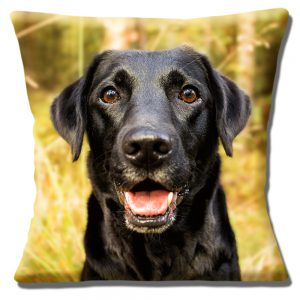 Black Labrador Dog Cushion or Cushion Cover Outdoor Setting