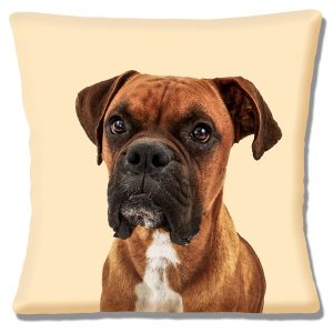 Young Boxer Dog Cushion or Cushion Cover Cream