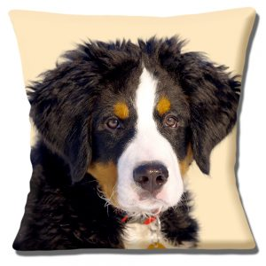 Bernese Mountain Puppy Dog Cushion or Cushion Cover Cream