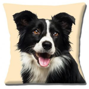 Border Collie Dog Cushion or Cushion Cover