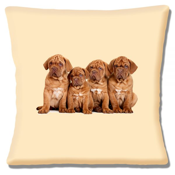 French Bordeaux Puppy Dogs Cushion or Cushion Cover Cream