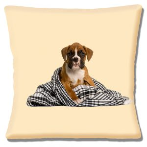 Boxer Puppy Dog Cushion or Cushion Cover Sitting in Blanket