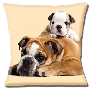 English Bulldog and Puppy Cushion or Cushion Cover