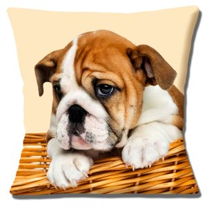English Bulldog Puppy Dog Cushion or Cushion Cover Basket