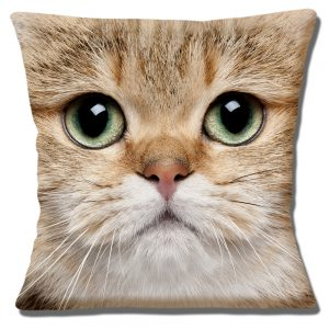 Brown Kitten Cat Cushion or Cushion Cover Green Eyes
