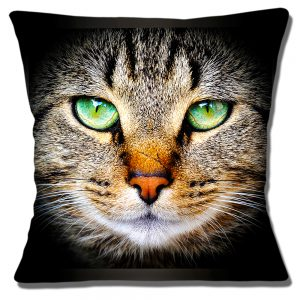 Tabby Cat Cushion or Cushion Cover Scarred Nose Green Eyes