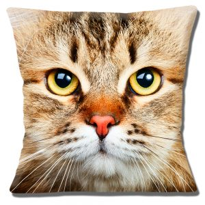 Brown Cat Cushion or Cushion Cover Dark Markings Yellow Eyes