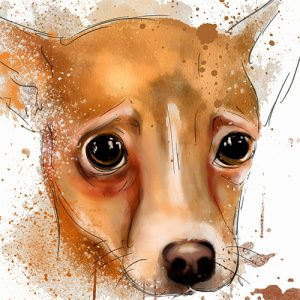 Fawn Chihuahua Dog Artistic Modern Cushion or Cushion Cover
