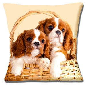 King Charles Spaniel Puppies Cushion or Cushion Cover Cavalier Basket