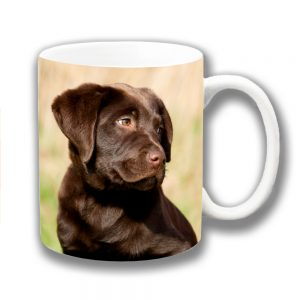 Chocolate Labrador Dog Coffee Mug Young Dog Outdoors
