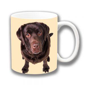 Chocolate Labrador Dog Coffee Mug Looking Up Cream