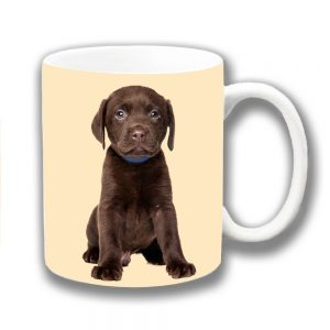 Chocolate Labrador Puppy Dog Coffee Mug Blue Collar