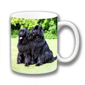 Newfoundland Dogs Coffee Mug Black Dogs Outdoors