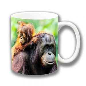 Adult Orangutan and Baby Coffee Mug Wild Animal Ceramic