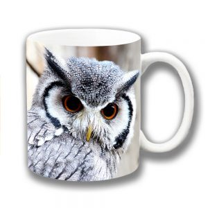 Owl Coffee Mug White-Faced Grey Amber Eyes Ceramic