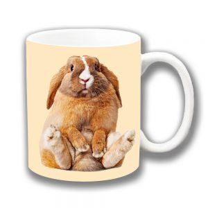 Rabbit Coffee Mug Chubby Brown White Pet Bunny