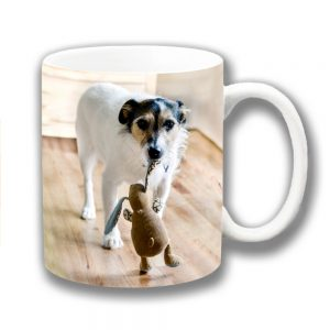 Jack Russell Coffee Mug Old Dog Soft Toy Knitted Rabbit