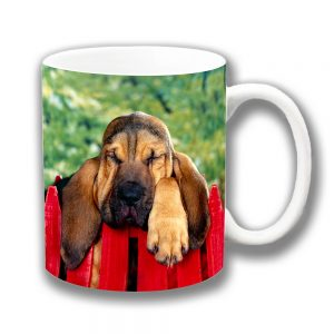 Bloodhound Dog Coffee Mug Sleepy Dog Resting Fence