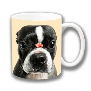 Boston Terrier Dog Coffee Mug Treat Nose Cream
