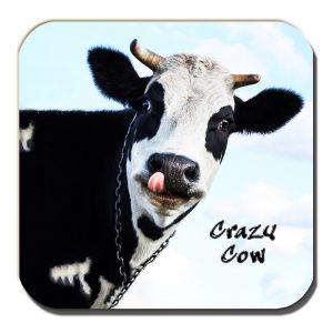Crazy Cow Coaster Funny Message Black White Dairy Cow