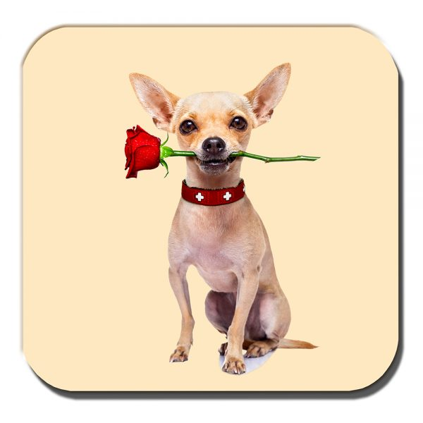Chihuahua Coaster Fawn Dog Red Rose Romantic Love