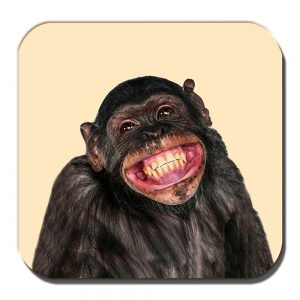 Chimpanzee Coaster Funny Chimp Smiling Laughing Cream