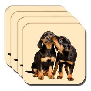 Dachshund Puppies Coaster Black Tan Pups Playing Cream - Set of 4
