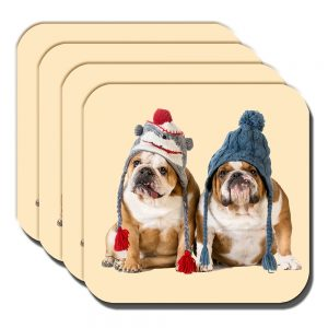 English Bulldogs Coaster Young Dogs Tan White Winter Knitted Hats - Set of 4