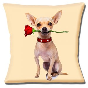Chihuahua Cushion or Cushion Cover Fawn Dog Red Rose