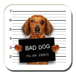 Dachshund Coaster Tan Bad Dog Black Eye Jail Mug Shot White