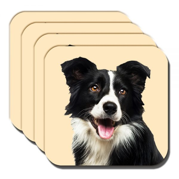 Border Collie Coaster Black White Sheepdog Cream - Set of 4