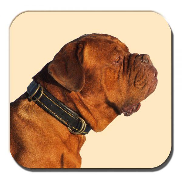 Bullmastiff Coaster Adult Tan Brown Dog Photo Acrylic Cream