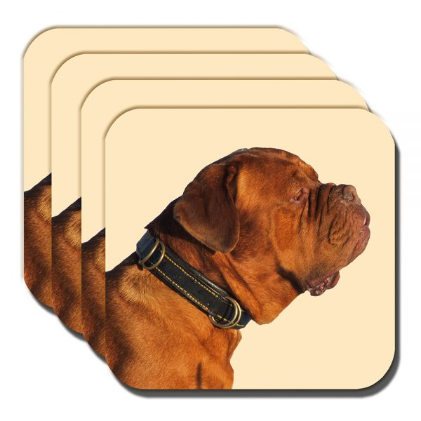 Bullmastiff Coaster Adult Tan Brown Dog Photo Acrylic Cream - Set of 4
