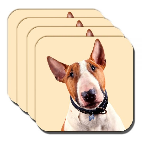 Bull Terrier Coaster Adult Tan White Dog Acrylic Cream - Set of 4