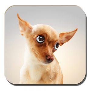 Chihuahua Coaster Funny Fawn Cartoon Dog Big Eyes Acrylic