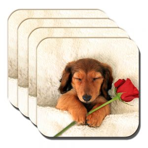 Dachshund Coaster Sleepy Tan Pup Dog Red Rose - Set of 4