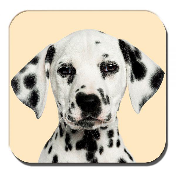 Dalmation Coaster Black White Spotty Puppy Dog Cream