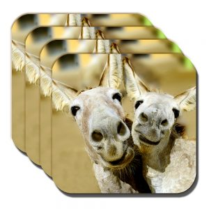 Donkey Mules Coaster Two Donkeys Pulling Funny Faces Smiling - Set of 4